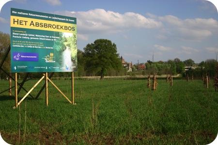 BrutselBos 2009 na 2 1/2 week