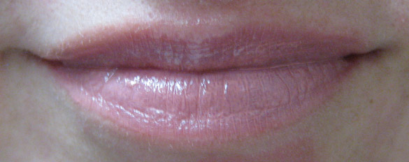 GOSH New Years Look 2010 Lip Intense Colour pink beige 301