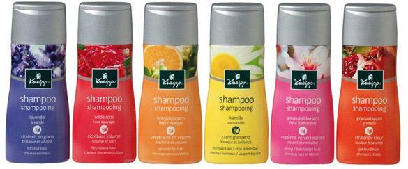 Kneipp Shampoo