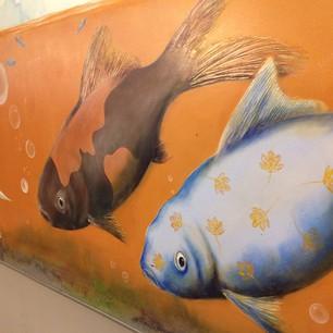 Vissen station Driebergen-Zeist