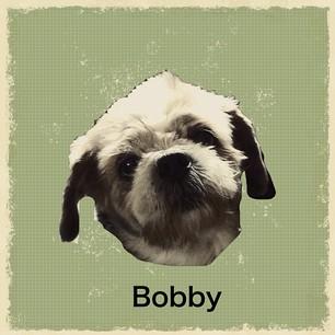 Bobby retromatic