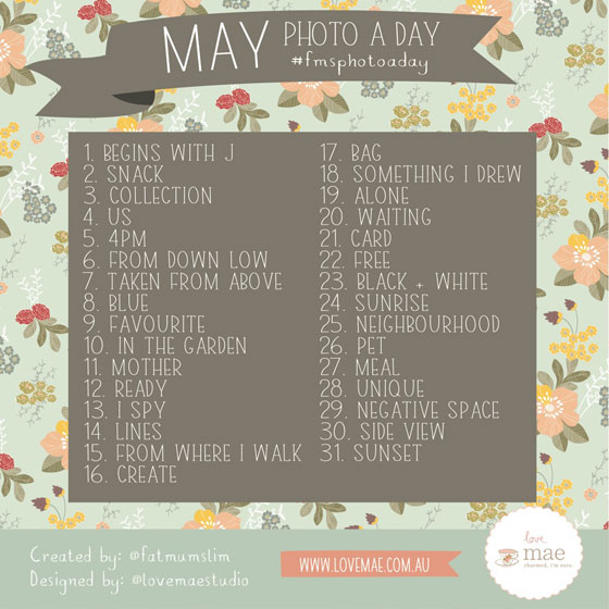 photoaday A Photo a Day Challenge May 2014