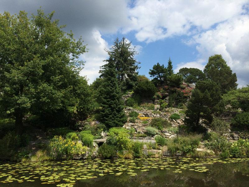 bt01 Vlinders in de Botanische Tuinen