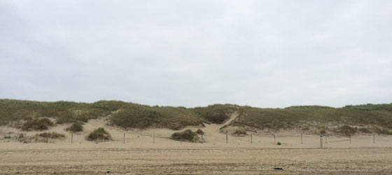 Boven de duinen ook grijs