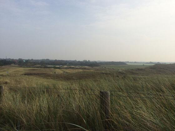 Uitzicht duinen Callantsoog