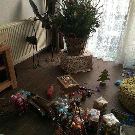 kerstboom af tuigen