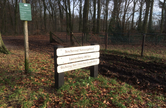 Natuurwandeling Grebbeberg