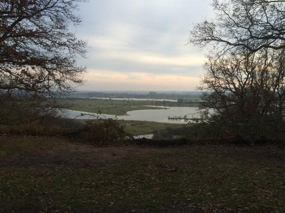 Ploggen 1 Januari 2015: Natuurwandeling Grebbeberg