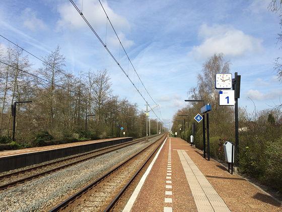 Culiperslunch 2015 wachten op Veenendaal West