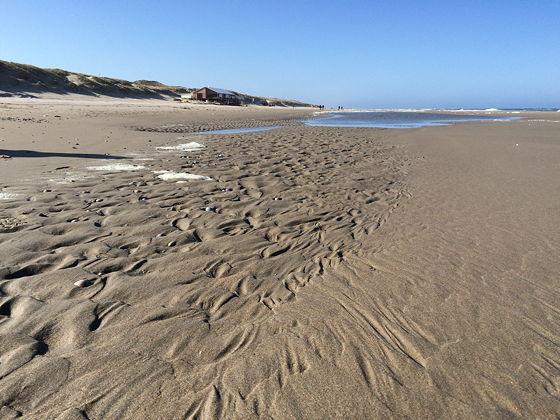 Strandwandeling De Koog & Vuurtoren De Cocksdorp water en strand