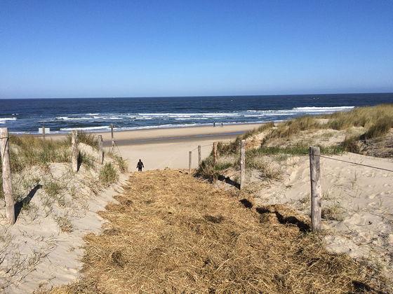 Strandwandeling De Koog & Vuurtoren De Cocksdorp stro op de duinen