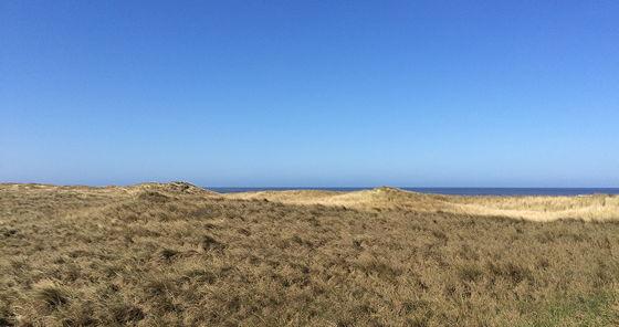 Strandwandeling De Koog & Vuurtoren De Cocksdorp uitzicht duinen op zee