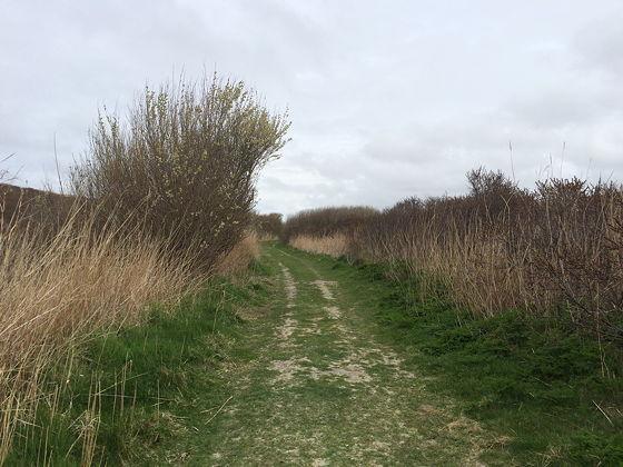 Wandeling De Muy op Texel graspad