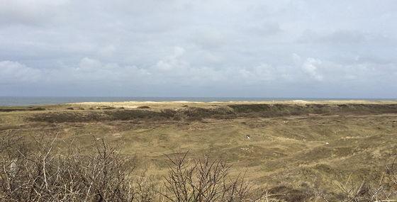 Wandeling De Muy op Texel op de hoogste duin