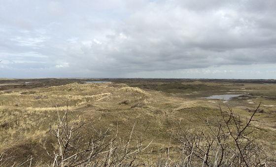 Wandeling De Muy op Texel uitzicht broedgebied
