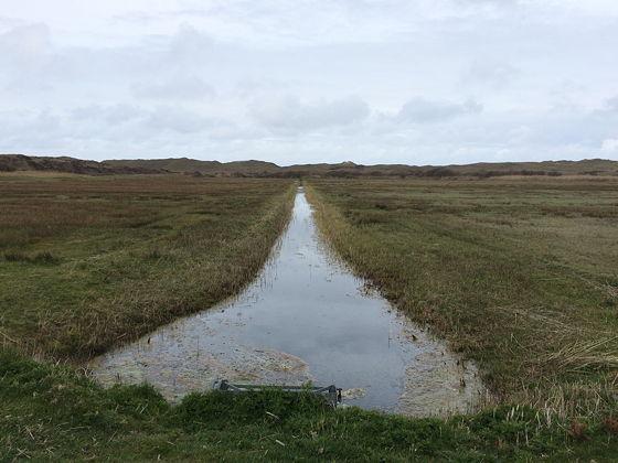 Wandeling De Muy op Texel sloot