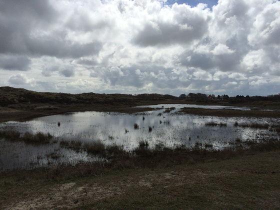 Wandeling De Muy op Texel weerspiegeling wolken water