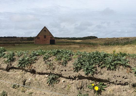 Wandeling De Muy op Texel