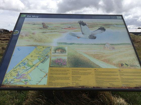 Wandeling De Muy op Texel gebied