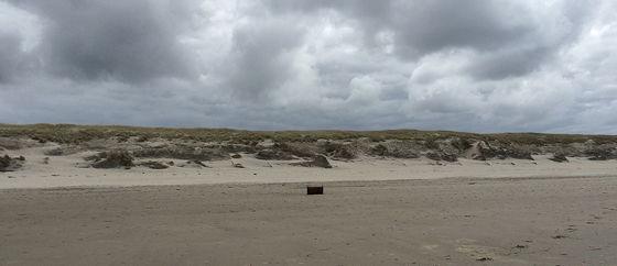 Wandeling De Muy op Texel kist