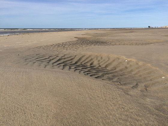 Den Burg, Oudeschild en Strandwandeling De Koog water weggelopen