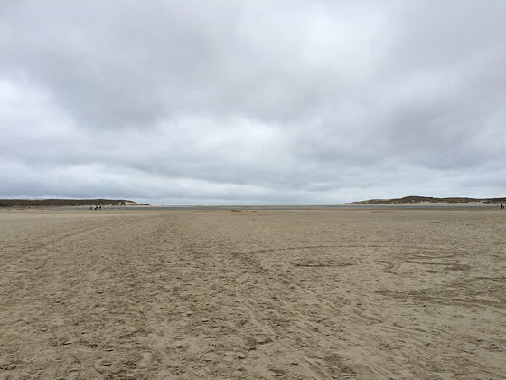 Wandeling de Slufter en Boot naar Vlieland wijds uitzicht