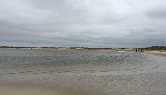 Wandeling de Slufter en Boot naar Vlieland water trekt zich langzaam terug