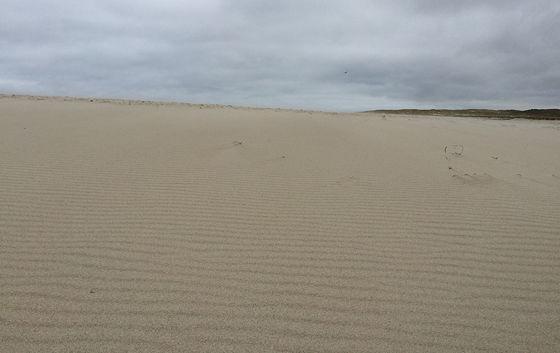 Wandeling de Slufter en Boot naar Vlieland wind speling zand