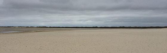 Wandeling de Slufter en Boot naar Vlieland verder duinen