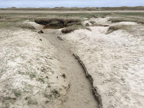 Wandeling de Slufter en Boot naar Vlieland droog