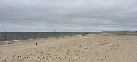 Wandeling de Slufter en Boot naar Vlieland wandelen langs de waddenzee