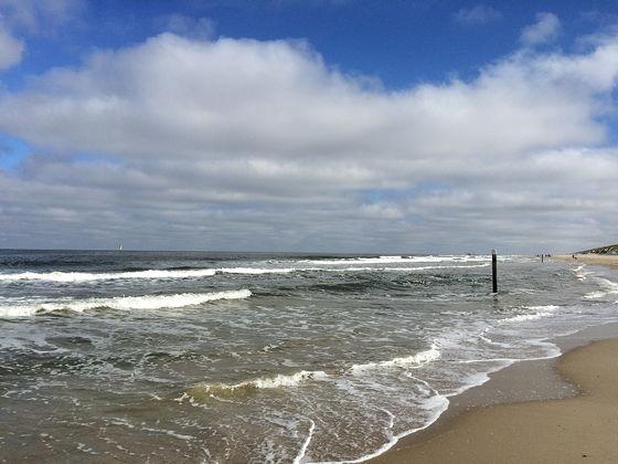 Huifkartocht en Wandeling over Strand en door Duinen vloed