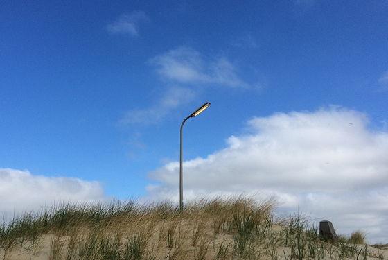 Huifkartocht en Wandeling over Strand en door Duinen lantaarnpaal aan