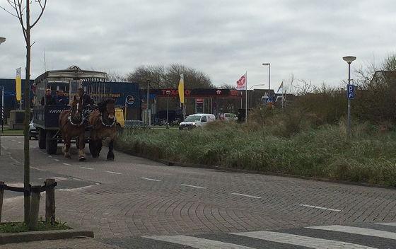 Huifkartocht en Wandeling over Strand en door Duinen Jan Plezier