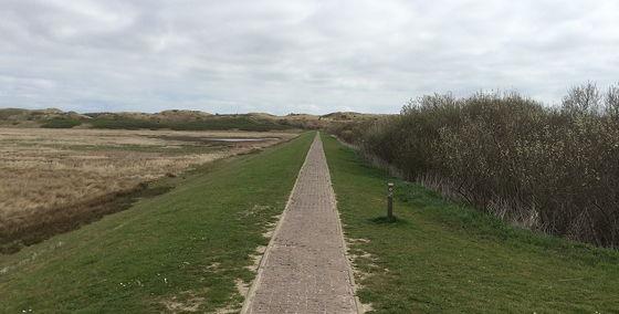 Huifkartocht en Wandeling over Strand en door Duinen pad scheiding zoet- en zoutwatergebied