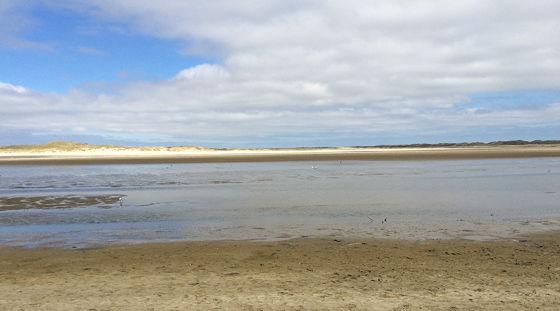 Huifkartocht en Wandeling over Strand en door Duinen minder water