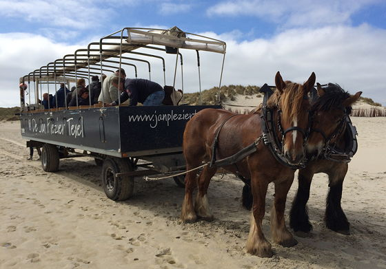 Ploggen 23 April 2015: Huifkartocht en Wandeling over Strand en door Duinen