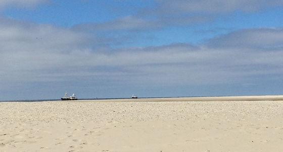 Huifkartocht en Wandeling over Strand en door Duinen vissersbootjes