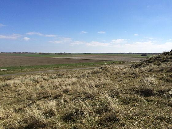 Huifkartocht en Wandeling over Strand en door Duinen uitzicht Texel