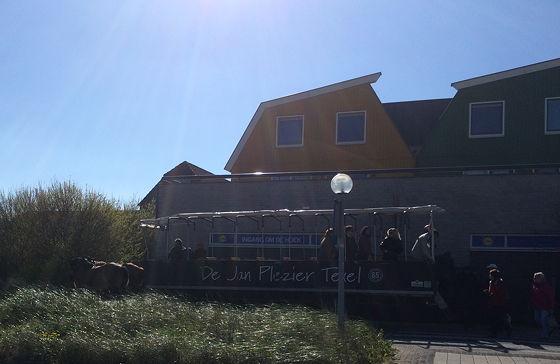 Huifkartocht en Wandeling over Strand en door Duinen uitstappen