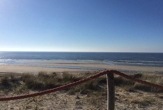 Huifkartocht en Wandeling over Strand en door Duinen gladde zee