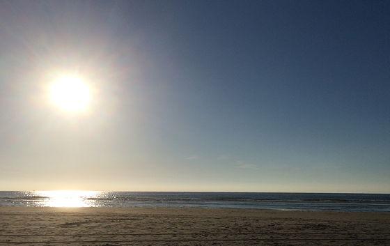 Huifkartocht en Wandeling over Strand en door Duinen strandwandeling