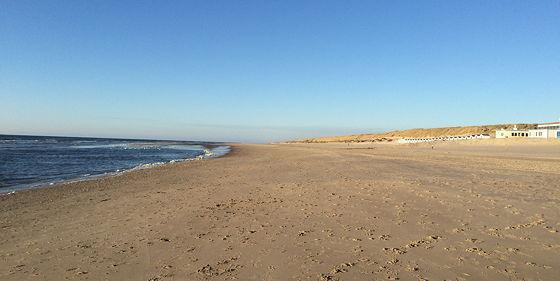 Huifkartocht en Wandeling over Strand en door Duinen rustig