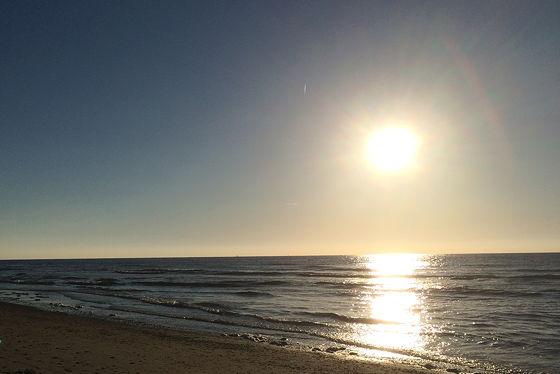 Huifkartocht en Wandeling over Strand en door Duinen zonsondergang