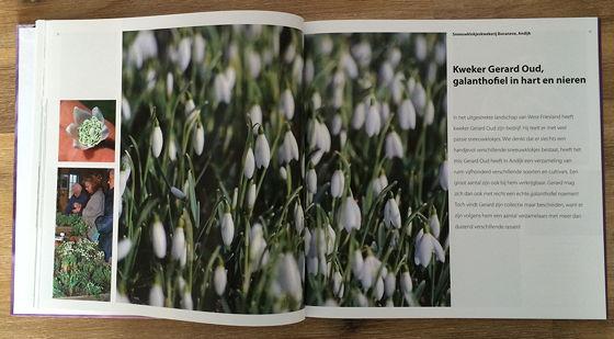 Inspirerende Tuinideeën - Hans Clauzing sneeuwklokjes kweker