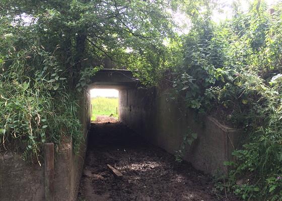 Ploggen Wandeling De Blauwe Kamer drek tunnel