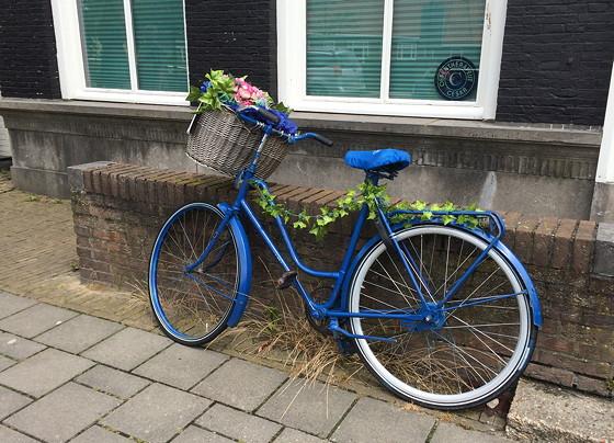 Ploggen 14 Juli 2015: Terherne en Akkrum blauwe fiets