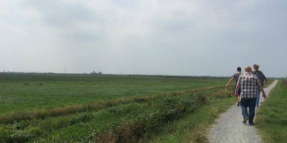 Ploggen 17 Juli 2015: Grou en Wandelen bij Sneekermeer stukje wandelen