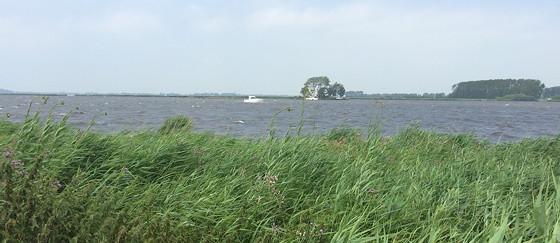 Ploggen 17 Juli 2015: Grou en Wandelen bij Sneekermeer uitzicht