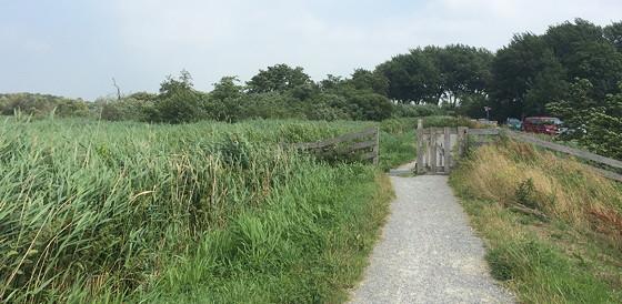 Ploggen 17 Juli 2015: Grou en Wandelen bij Sneekermeer terug hekje